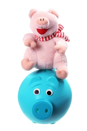 soft toy: Soft Toy and Piggybank on White background Stock Photo