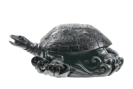 Feng Shui Tortoise on White Background photo