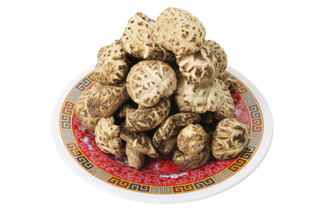 shitake: Shitake Mushrooms on White Background Stock Photo