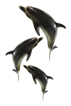 porpoise: Dolphins on White Background Stock Photo