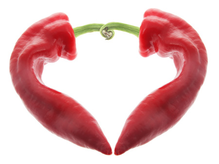chilli pepper: Red Chilli Pepper on White Background