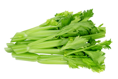 Bunch of Celery on White Background