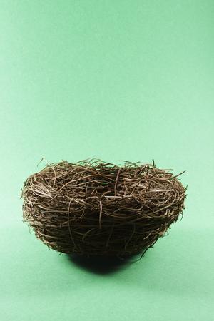 nido de pajaros: Nido de p�jaro en el fondo sin fisuras