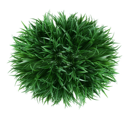 Artificial Shrub on White Background Stock Photo