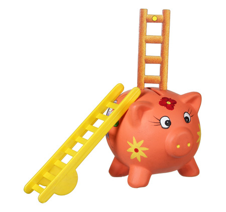 rungs: Piggybank with Ladders on White Background