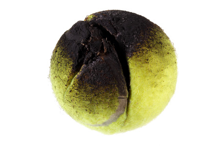Burnt Tennis Ball on White Background