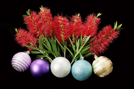 Chirstmas Baubles and Bottlebrush Flowers on Black Background Stock Photo