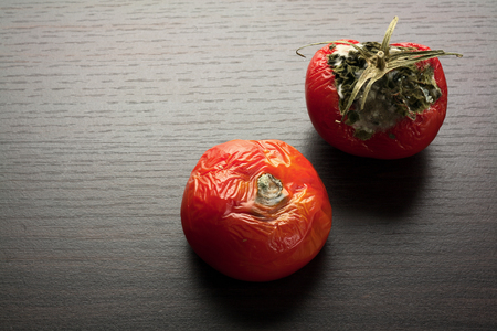 Rotten Tomato on Wooden Background Banque d'images