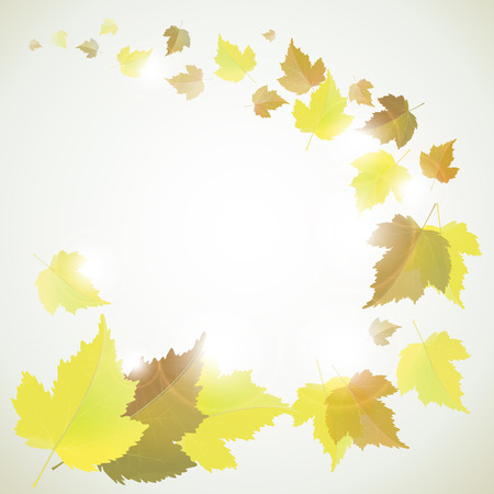 Autumn vector background with yellow leaves and place for text  Back to school and seasons theme