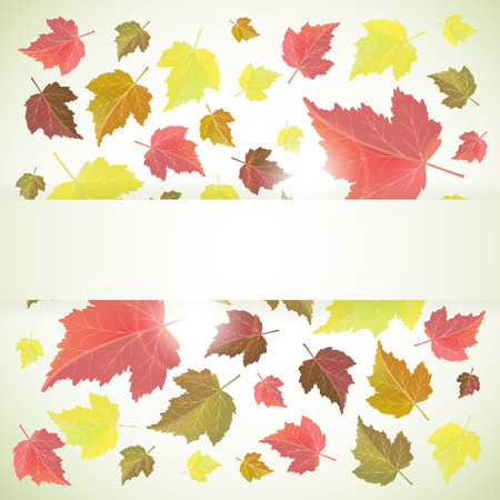 Autumn vector background or frame with yellow and red leaves and banner for text  Back to school and seasons theme      Illustration