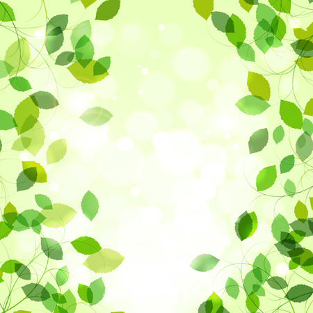Summer or spring natural background. Branches with fresh green leaves.