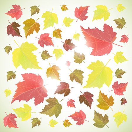 Autumn background with yellow and red leaves on a white background. Back to school and seasons theme.