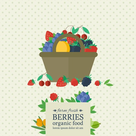 Banner with different berries in basket. Concept organic farm fresh food. Vector illustration