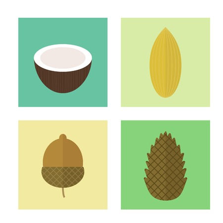 Set of icons nuts in flat style. Vector elements for design. Pine nuts, coconut, acorn, almond Illustration