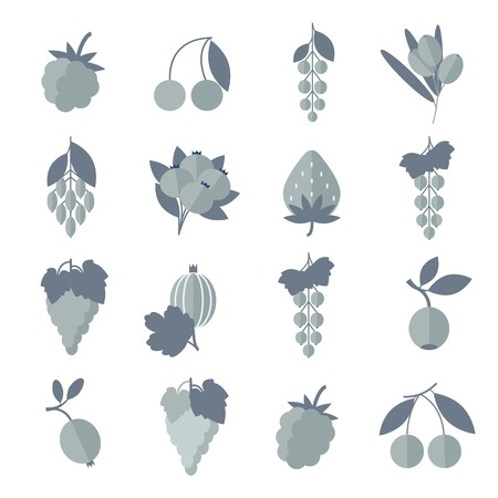 Silhouette black white gray icons of berries set.  Vector