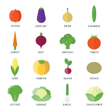 Set of food icons vegetables and fruits and text in flat style for web and mobile app design Vector