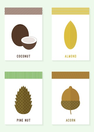amande: Cartes avec �crous. Vector illustration. noix de pin, noix de coco, gland, d'amande