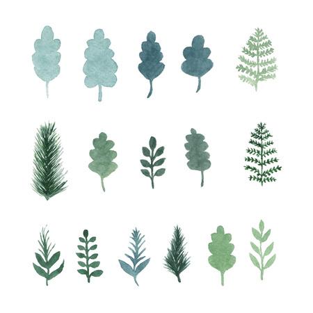ilustracion: Conjunto de la mano las hojas verdes de la acuarela empate, plantas, hierbas y ramas de �rboles. Aislados objetos vectoriales. Elementos de la selva