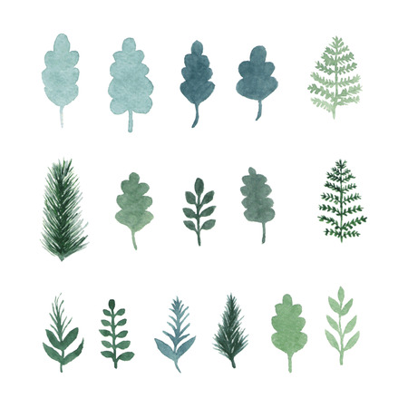 an illustration: Set of green hand draw watercolor leaves, plants, herbs and tree branches. Vector isolated objects. Elements of the forest Illustration