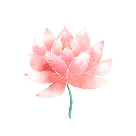 oriental: Watercolor lotus flower pink. Vector painted decorative element isolated on white background. Logo template. Symbol of India, oriental practices, yoga, ayurveda, meditation and buddhist culture