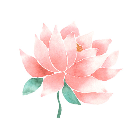 Watercolor lotus flower pink.  イラスト・ベクター素材