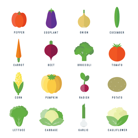 Set of food icons vegetables and fruits and text in flat style for web and mobile app design