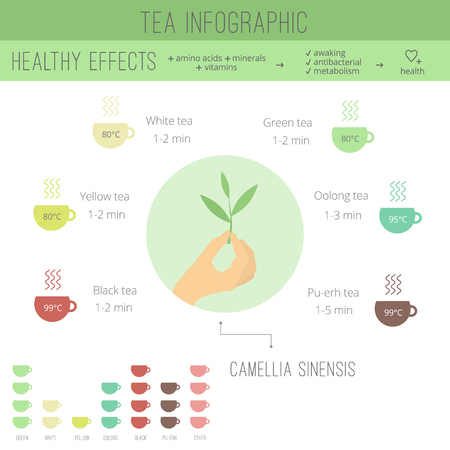 oolong: Tea time infographics. The health benefits, cooking, icons of cups in flat style