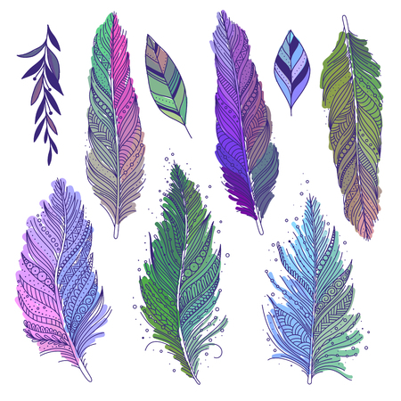 Colorful multicolored feathers and leaves isolated set, hand drawn art, boho style, vector art.