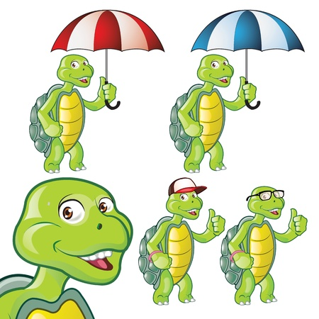Cute Turtle Cartoon Illustration