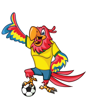 Vector illustration of football player parrot cartoon mascot Vector