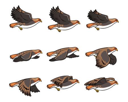 Hawk Vliegen Sprite