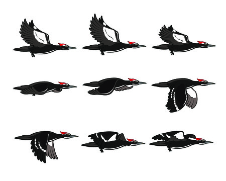 Woodpecker Flying Sprite