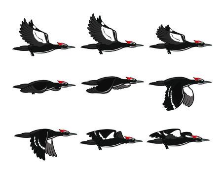 sprite: Woodpecker Flying Sprite