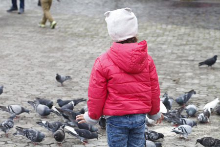 child and a lot of pigeons in the square photo