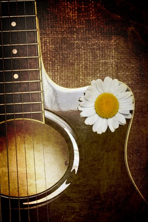 guitar and daisy flowers background wallpaper Stok Fotoğraf