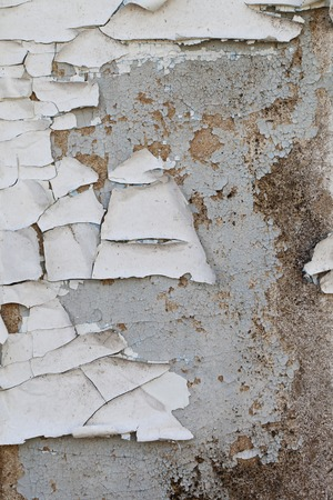 mangy: a Cracked paint on an old wooden door Stock Photo