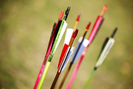 arco y flecha: a wooden arrows for the bow close up