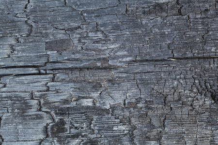 burnt wood: burnt wood texture close-up background of charred wood