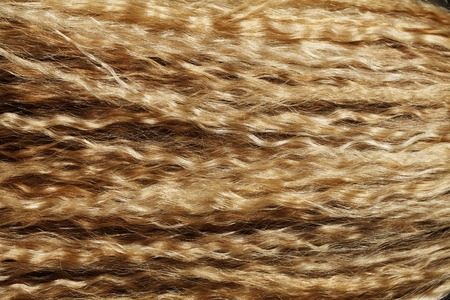 blonde streaks: a curly hair blond girl close-up texture