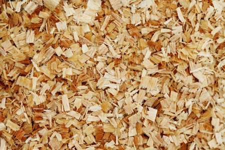 sawdust background, close-up Banco de Imagens