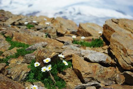 美しい自然、山の風景 写真素材