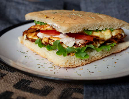 Craft food. Delicious juicy sandwich with chicken, fried egg, tomato and fresh salad. Reklamní fotografie