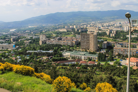 dormitory: dormitory area in Tbilisi and yellow bush and grove Stock Photo