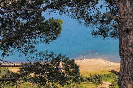 tbilisi: Tbilisi spiaggia del mare attraverso i rami di pino