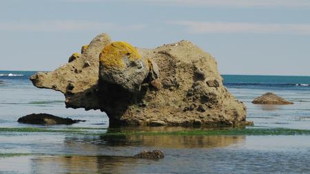 sakhalin: Stone mammoth, Tikhaya bay of Sakhalin island, Russia