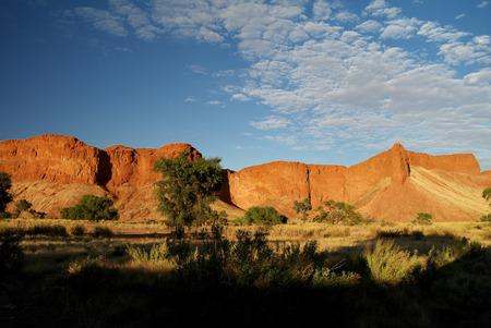 petrified: Petrified dunes at the sunset in Namib desert