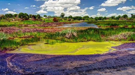 Bitumen and asphalt Pitch lake in Trinidad island, Trinidad and Tobago
