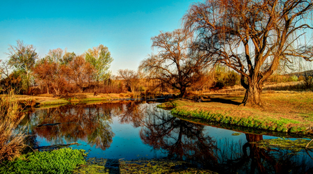 rsa: Rural South African landscape with lake, Republic of South Africa Stock Photo