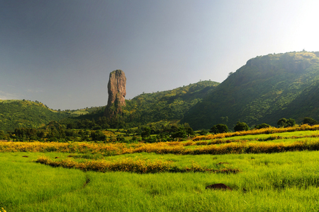 Agriculture landscape with gorst aka Finger of God and fields of teff, Ethiopia