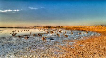 Najaf sea or Salam lake shore at sunset, An-Najaf, Iraq